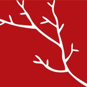 Red Branch Development